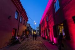 """Kultūros naktis 2019. Muzikinė meditacija """"Ataidantys Druskininkų peizažai"""""""