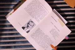 M. K. Čiurlionis. Kūrėjas ir žmogus. Autorius Stasys Yla