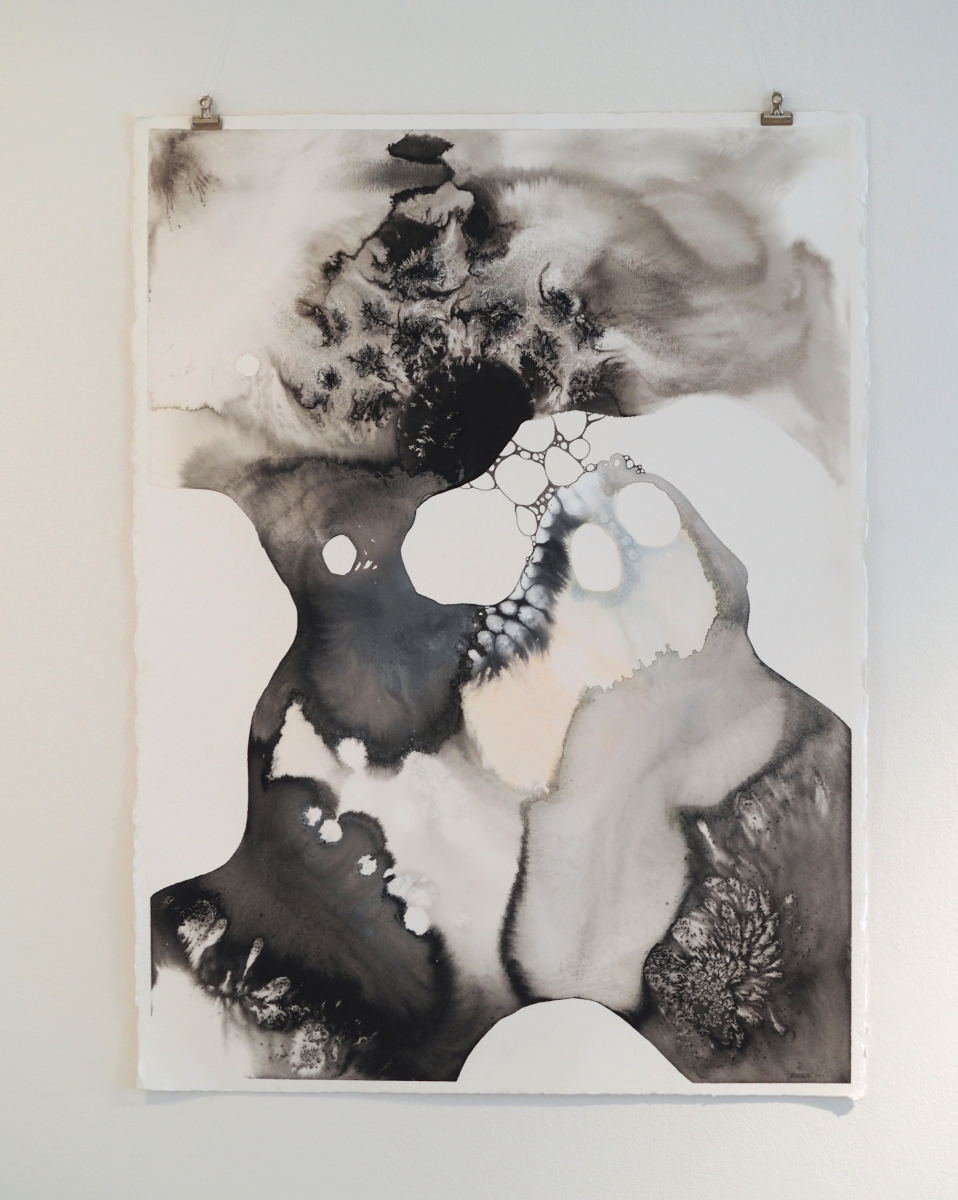 """Vienos dienos paroda """"ŪKANOS""""   Diana Zabielaitė   tapybinė grafika"""